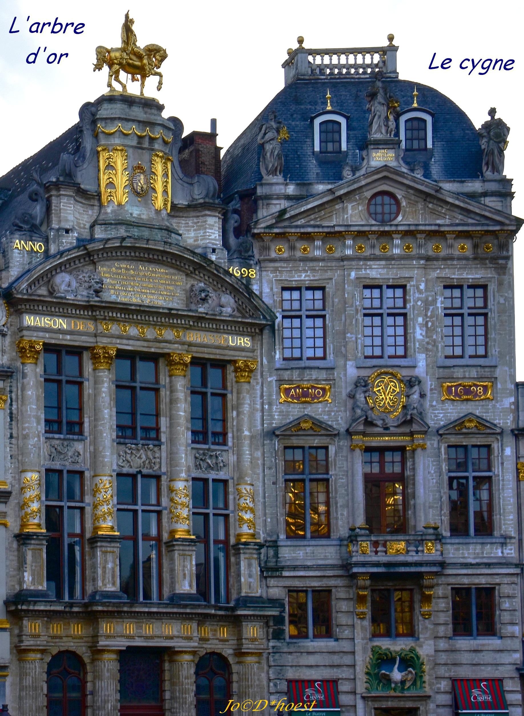 2019 GRAND PLACE DE BRUXELLES MO (18 sur 82)